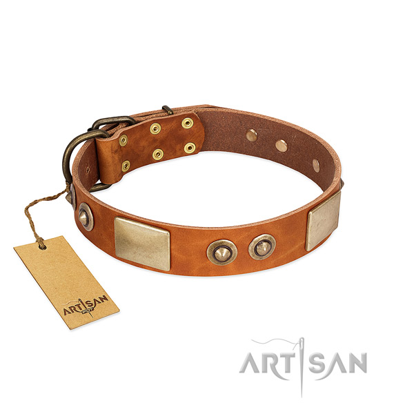 Easy to adjust leather dog collar for walking your canine