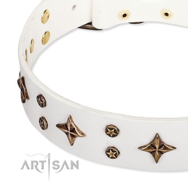 Stylish walking decorated dog collar of high quality natural leather