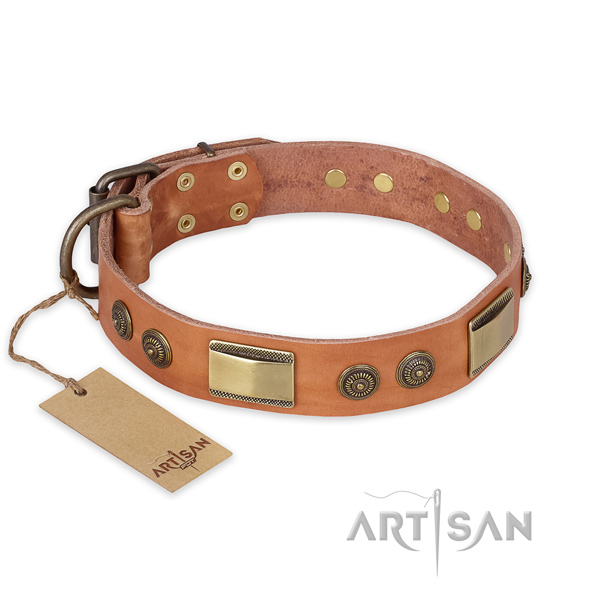Top notch leather dog collar for daily walking