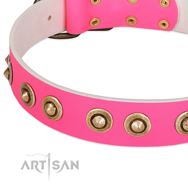 Corrosion proof adornments on leather dog collar for your four-legged friend