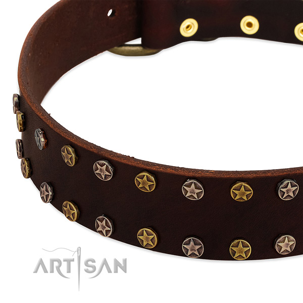Daily walking leather dog collar with top notch decorations