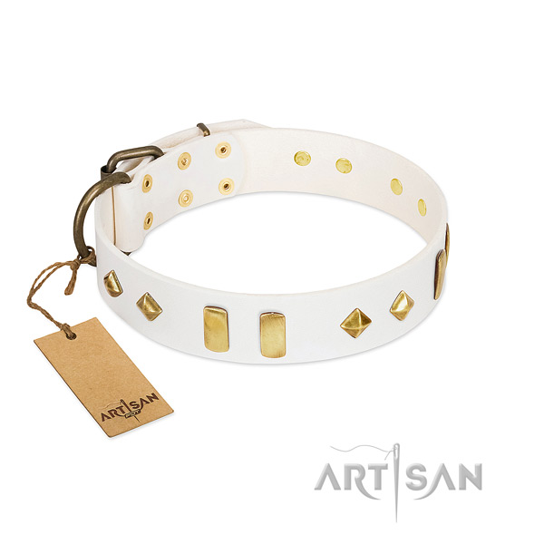 Walking top notch leather dog collar with studs