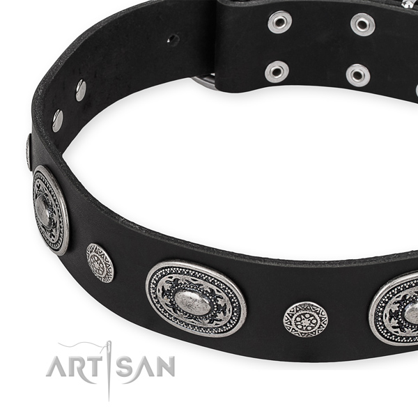 Quality leather dog collar created for your lovely doggie