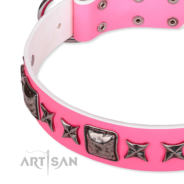 Fancy walking adorned dog collar of strong full grain leather
