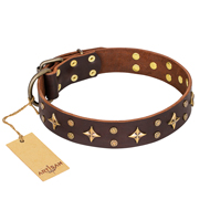 """High Fashion"" FDT Artisan Embellished Brown Leather dog Collar"