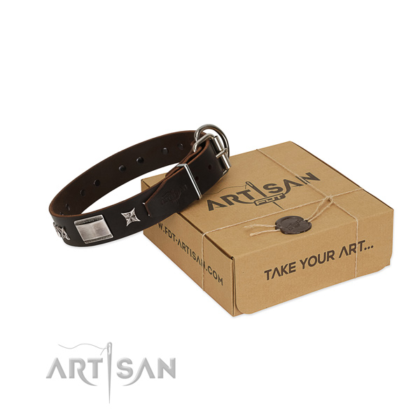 Exceptional collar of natural leather for your handsome dog