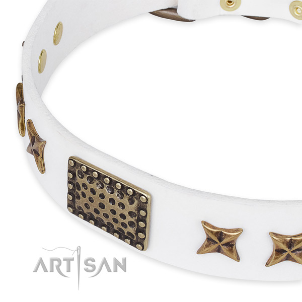 Full grain genuine leather collar with corrosion resistant fittings for your attractive pet
