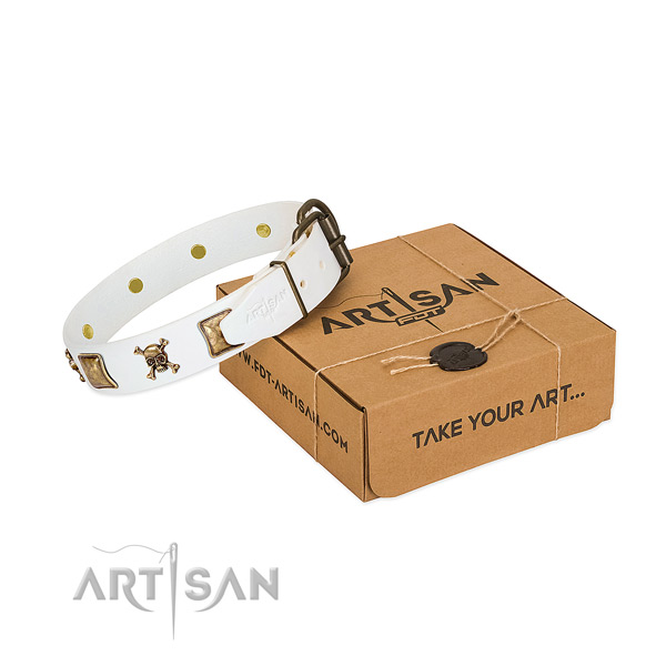 Top notch full grain natural leather dog collar with strong adornments