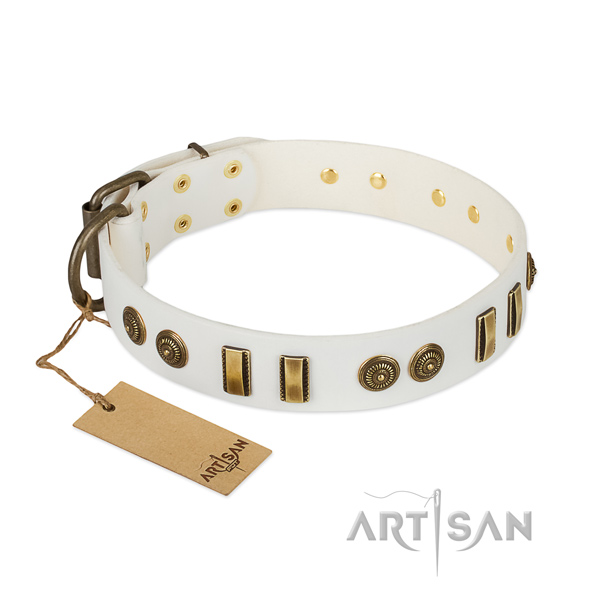 Rust-proof studs on natural leather dog collar for your four-legged friend