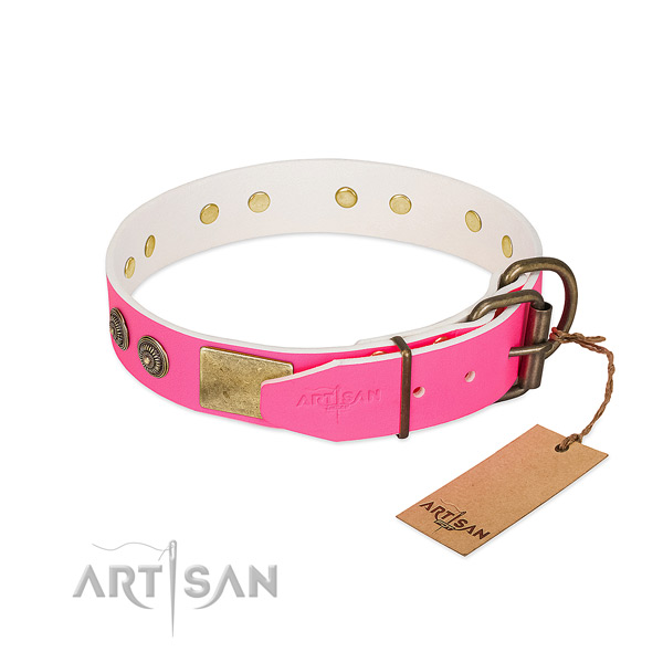 Reliable D-ring on full grain genuine leather collar for walking your pet