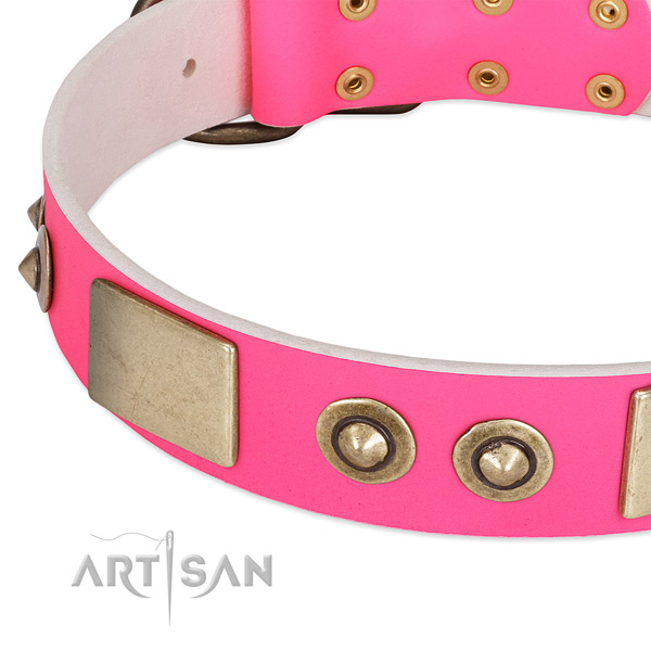 Durable embellishments on full grain natural leather dog collar for your four-legged friend