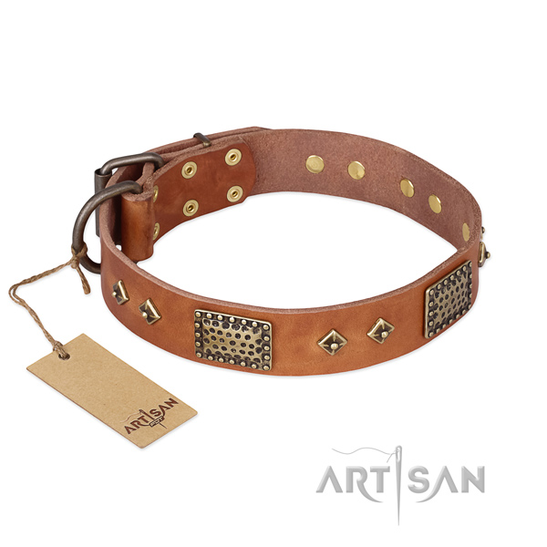 Awesome full grain natural leather dog collar for fancy walking