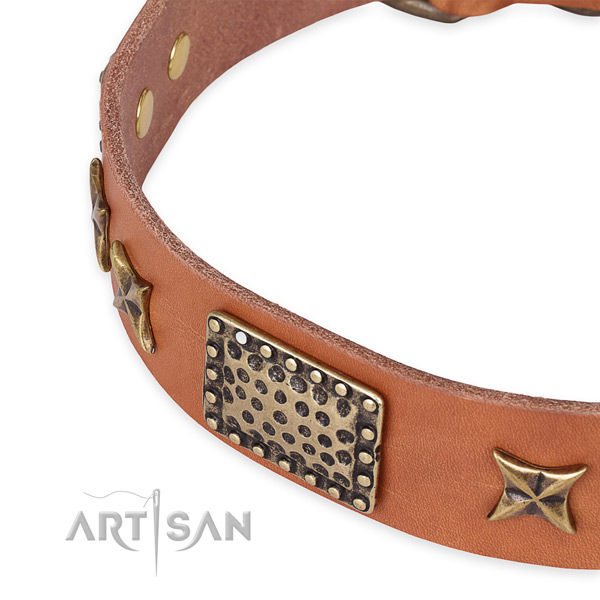Full grain leather collar with rust resistant fittings for your attractive doggie