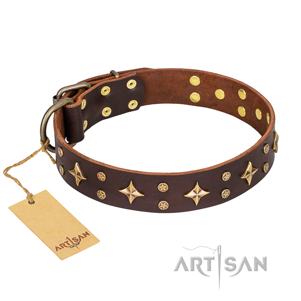 Stylish walking dog collar of reliable full grain genuine leather with adornments