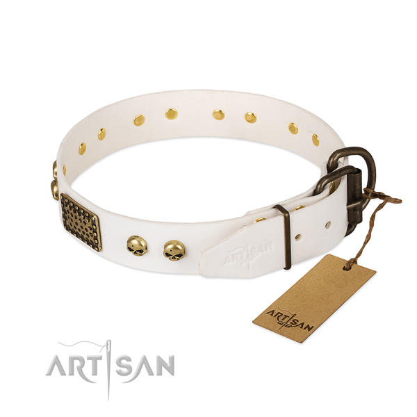 Adjustable leather dog collar for everyday walking your dog