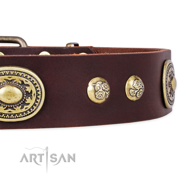 Decorated genuine leather collar for your handsome dog