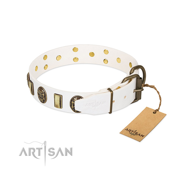 Strong fittings on genuine leather collar for daily walking your four-legged friend