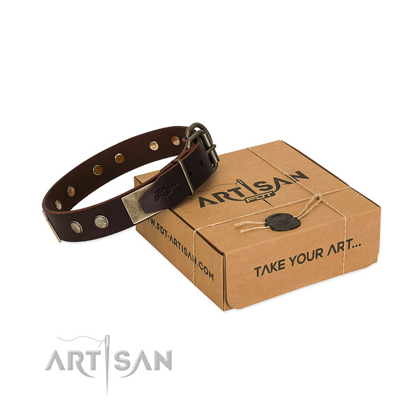 Reliable traditional buckle on dog collar for handy use