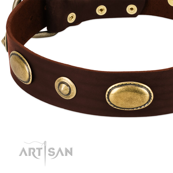 Corrosion resistant traditional buckle on leather dog collar for your pet