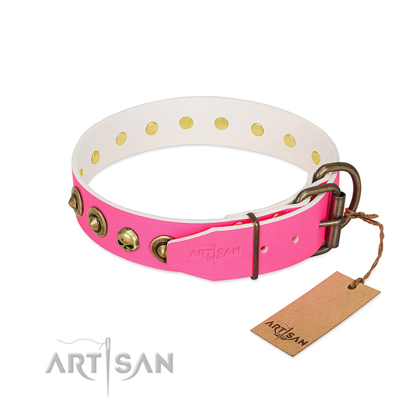 Full grain genuine leather collar with unusual adornments for your canine