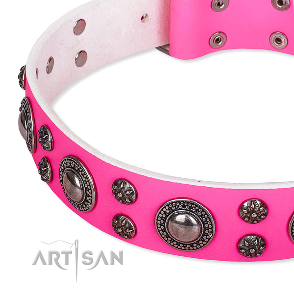 Handy use embellished dog collar of durable genuine leather