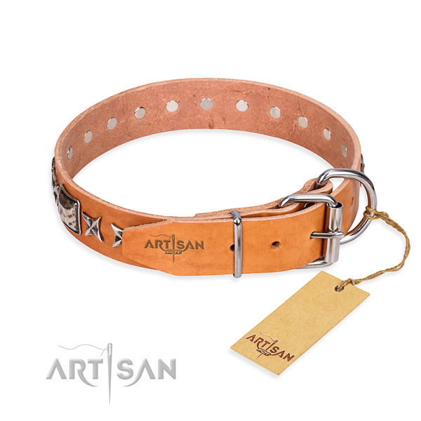 Top quality studded dog collar of full grain genuine leather
