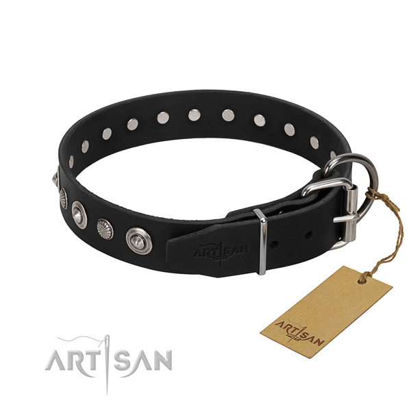 Durable full grain natural leather dog collar with trendy studs