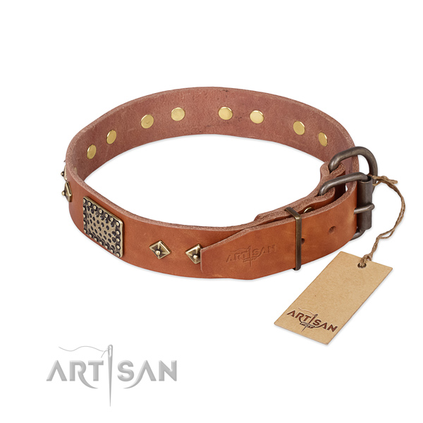 Full grain genuine leather dog collar with strong fittings and studs
