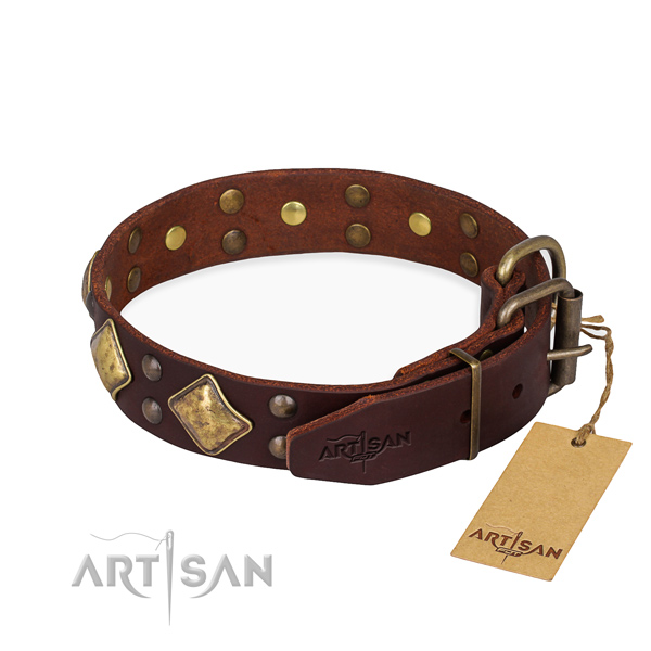 Leather dog collar with remarkable corrosion proof decorations