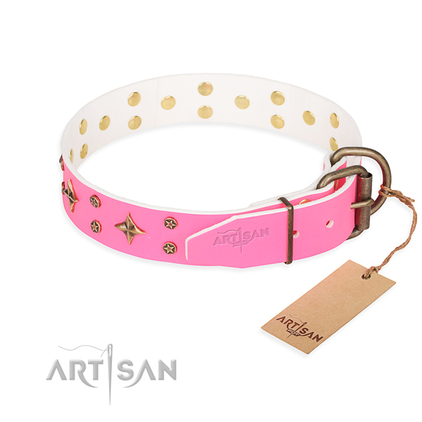 Reliable decorated dog collar of full grain natural leather