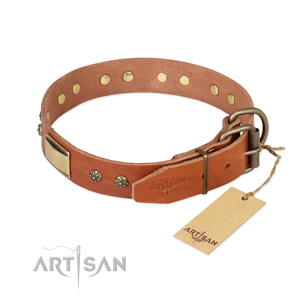 Full grain leather dog collar with corrosion proof fittings and adornments