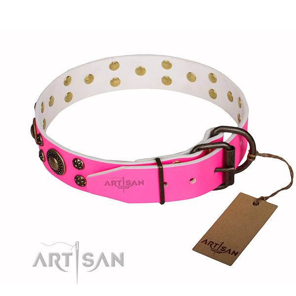 Everyday walking embellished dog collar of fine quality leather