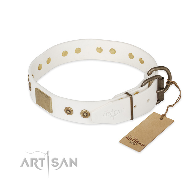 Natural leather dog collar with reliable hardware and adornments