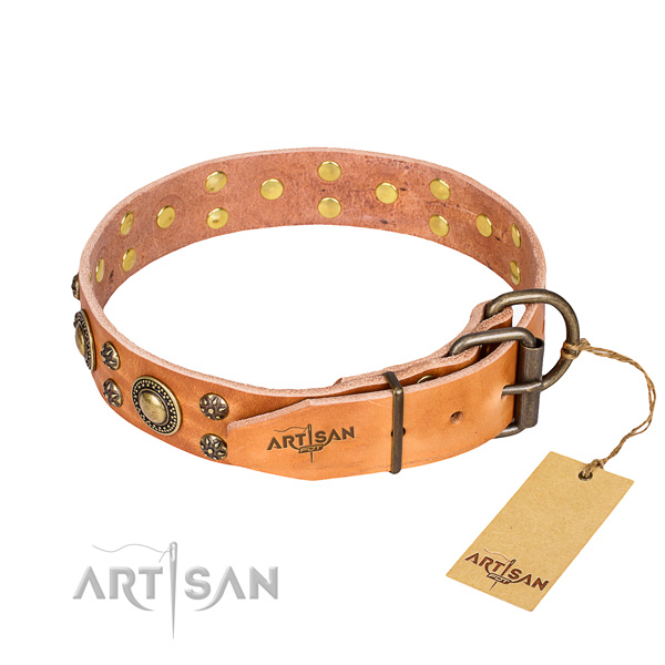 Comfortable wearing embellished dog collar of high quality leather