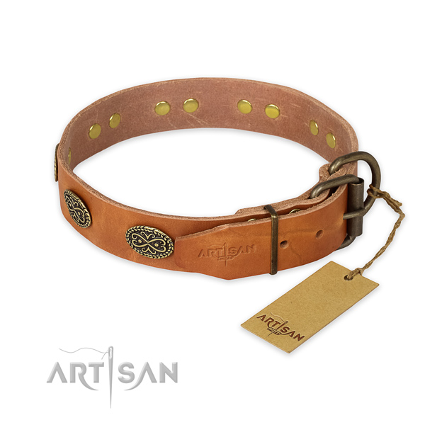 Rust resistant buckle on leather collar for stylish walking your four-legged friend
