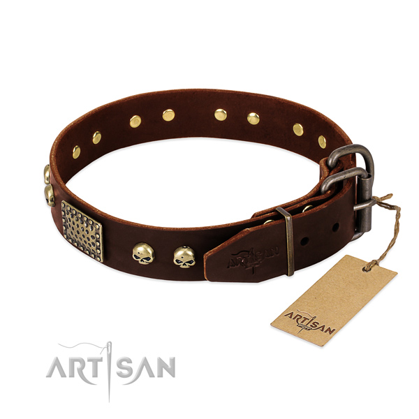 Rust-proof decorations on comfy wearing dog collar