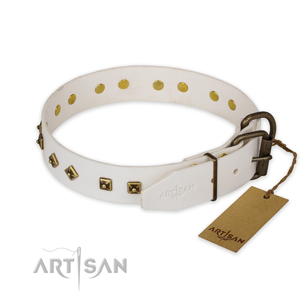 Rust resistant hardware on leather collar for basic training your four-legged friend