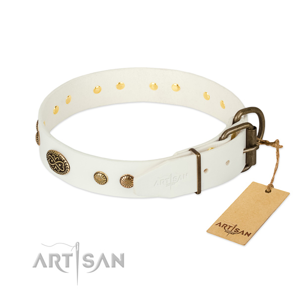 Durable embellishments on full grain natural leather dog collar for your pet