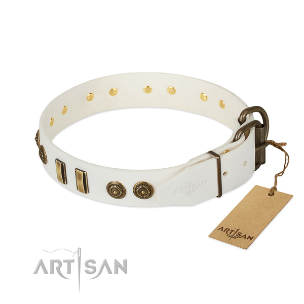 Corrosion resistant studs on natural leather dog collar for your canine