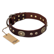 """Breath of Elegance"" FDT Artisan Decorated with Plates Brown Leather dog Collar"