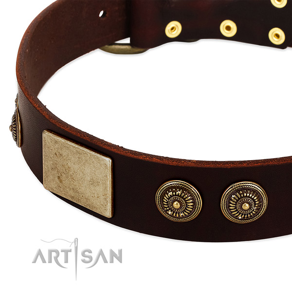 Durable fittings on full grain leather dog collar for your four-legged friend