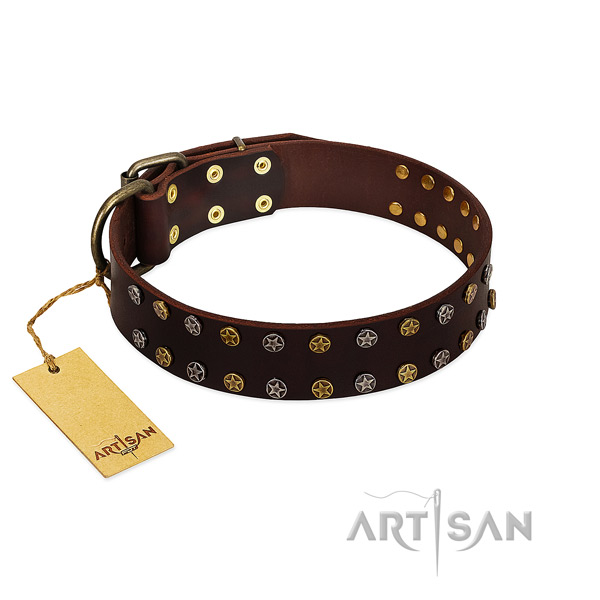 Comfortable wearing quality full grain natural leather dog collar with studs