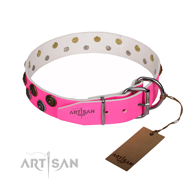 Daily use adorned dog collar of quality leather