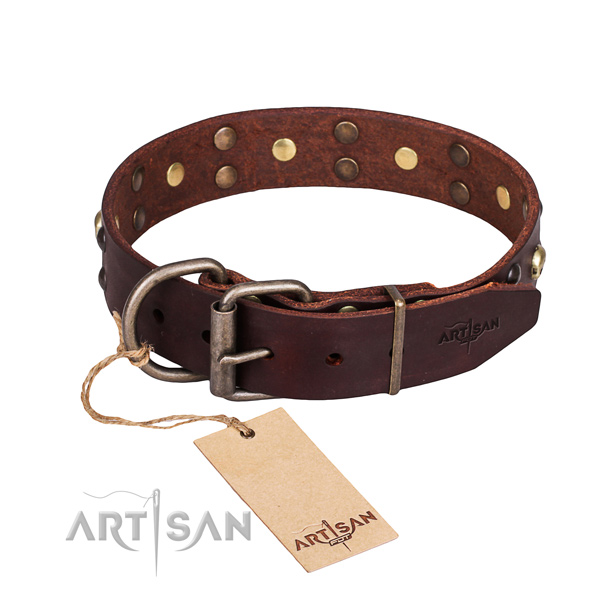 Everyday use embellished dog collar of top notch full grain leather