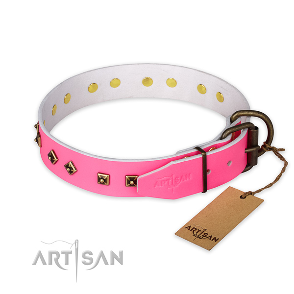 Corrosion resistant D-ring on leather collar for stylish walking your canine