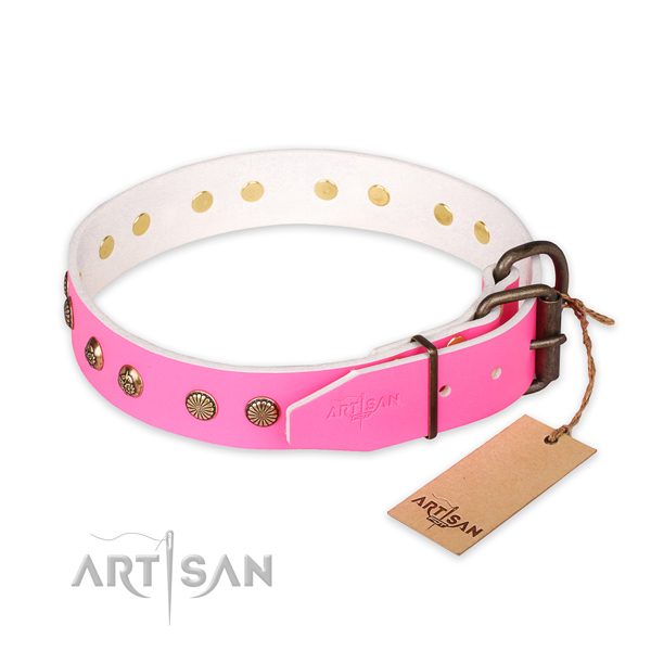 Reliable buckle on leather collar for your beautiful four-legged friend