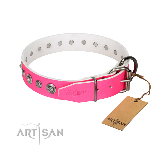 Strong full grain leather dog collar with stylish embellishments