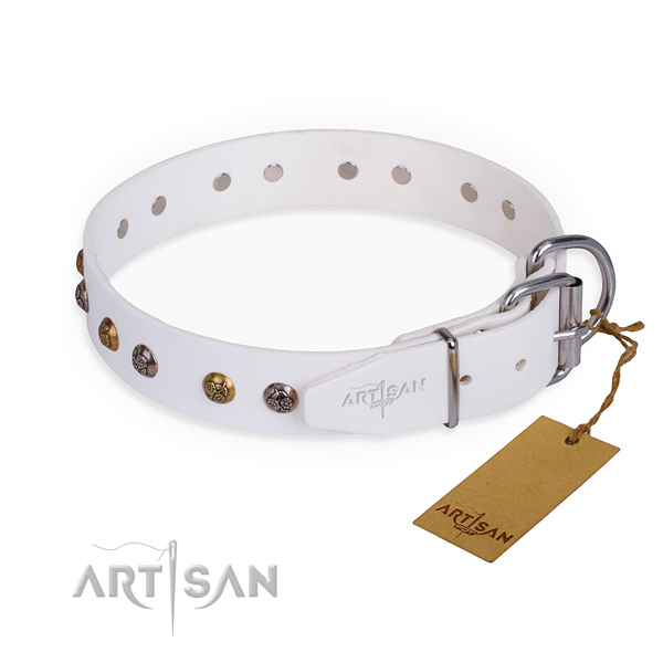 Genuine leather dog collar with impressive rust-proof decorations