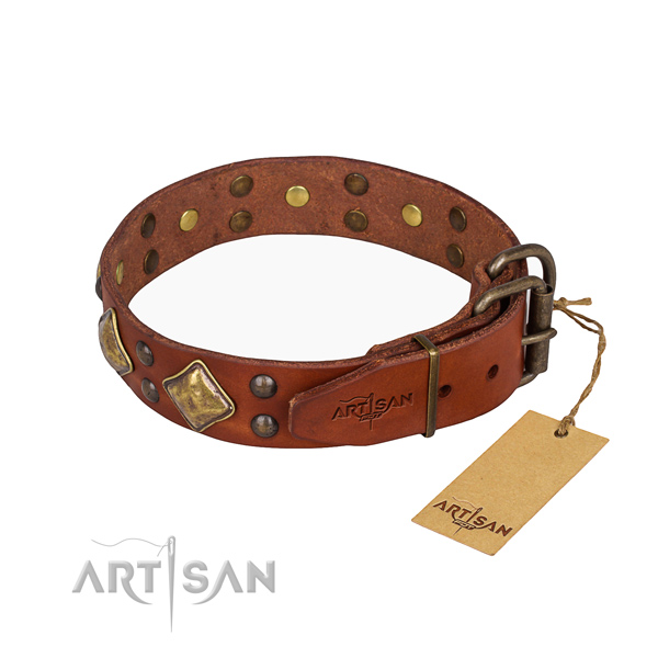 Leather dog collar with stunning rust-proof embellishments