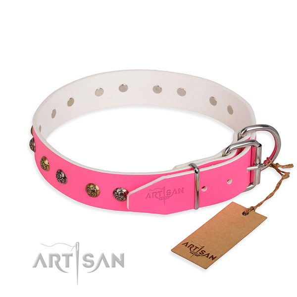 Full grain natural leather dog collar with top notch reliable decorations